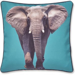 Catherine Lansfield Elephant Cushion Cover Teal, 43x43cm
